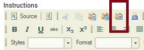 The Paste from Word icon in the rich-text toolbar