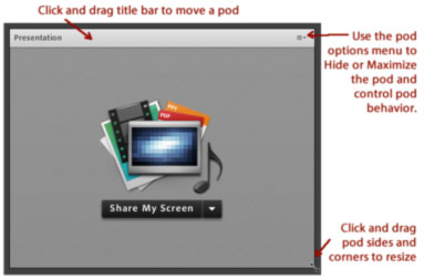 Screenshot of a sample pod in an Adobe Connect meeting room