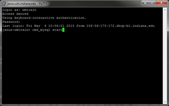 MySQL start command