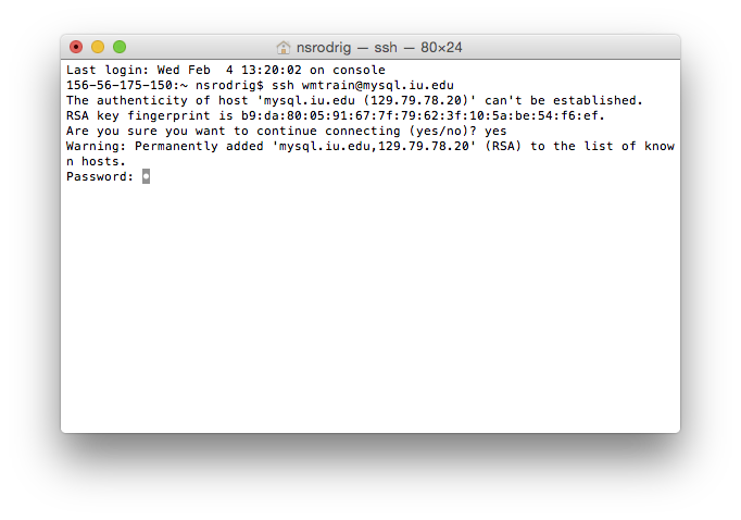MySQL password prompt