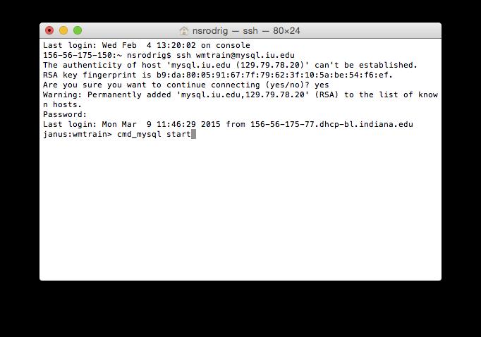 Command to start MySQL server