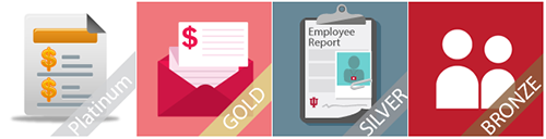 Decision Support platinum, gold, silver, and bronze badging examples