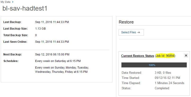 Commvault restore files status screen