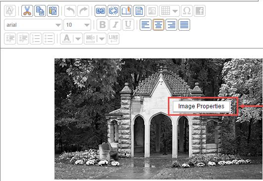 Salesforce Image Properties