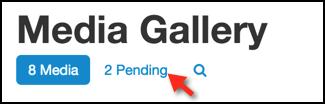Kaltura: Media Gallery tool pending link