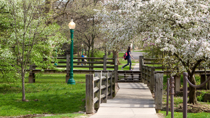 Woodburn Bridges on campus